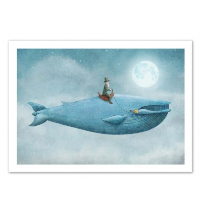 Whale Rider - Terry Fan