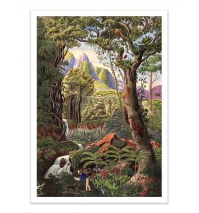 Art-Poster - Morenia Poppigiana - Astër