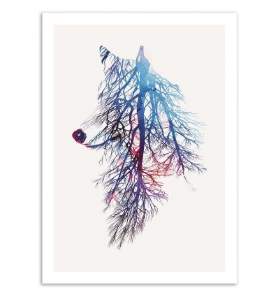 My Roots - Robert Farkas