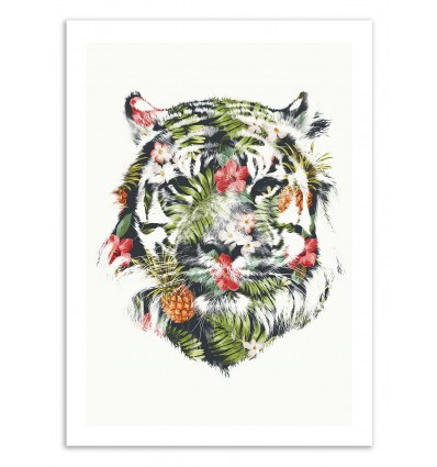 Tropical Tiger - Robert Farkas