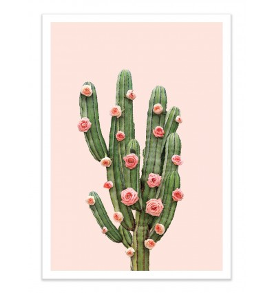 Art-Poster - Cactus and Roses - Paul Fuentes