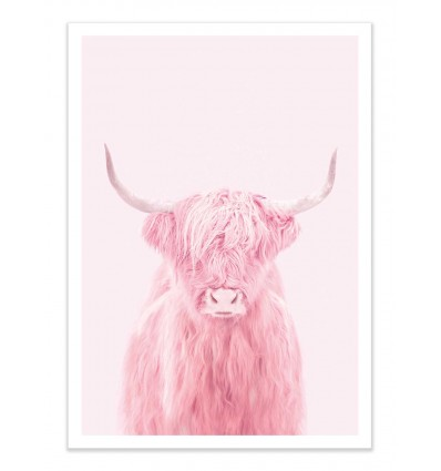 Art-Poster - Highland cow - Paul Fuentes