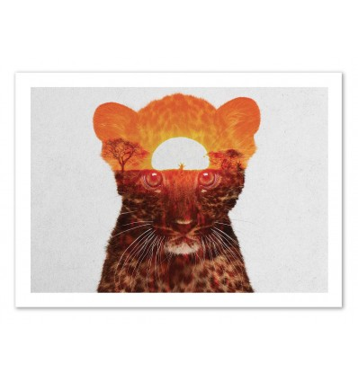 Leopard Cub - Andreas Lie