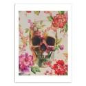 Art-Poster - Skull - Andreas Lie