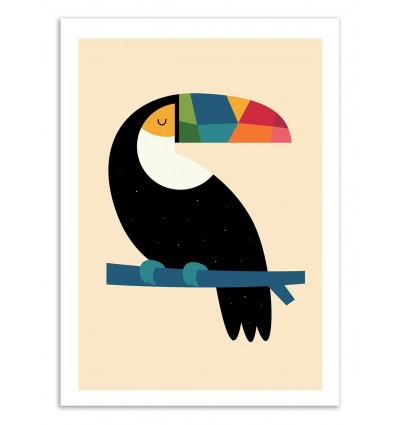 Rainbow Toucan - Andy Westface