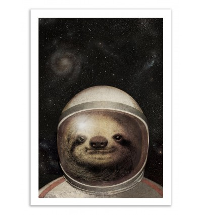 Space Sloth - Eric Fan