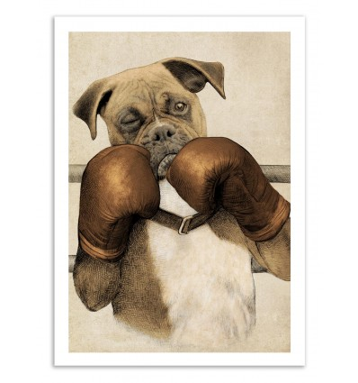 The Boxer - Eric Fan