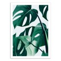 Art-Poster - Monstera - 83 Oranges