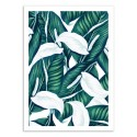 Art-Poster 50 x 70 cm - Tropical Winter - 83 Oranges