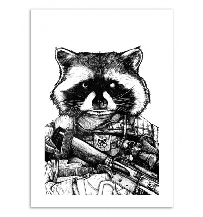 Raccoon - Nicolas Côme