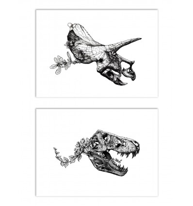 2 Art-Posters 30 x 40 cm - Duo Tyrannosaur and Triceratops - Nicolas Côme