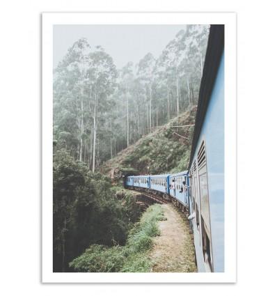 Sri Lanka - Luke Gram