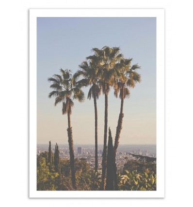 Palm Los Angeles - Luke Gram