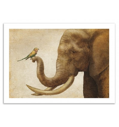 Art-Poster - A New Friend - Eric Fan