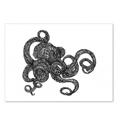 Barnacle Octopus - Ella Mazur