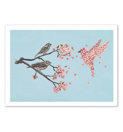 Art-Poster 50 x 70 cm - Blossom Bird - Terry Fan