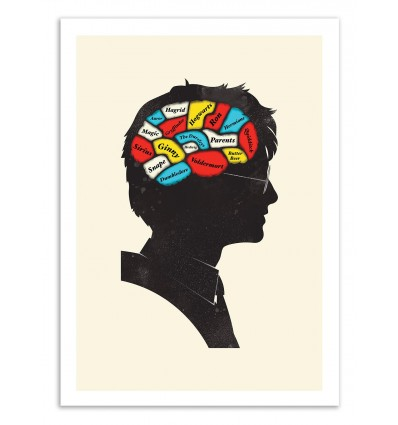 Art-Poster 50 x 70 cm - Harry Potter Phrenology - Chris Wharton