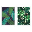 2 Art-Posters 30 x 40 cm - Duo Mirage and Oasis Plants - Tracie Andrews