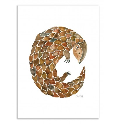 Art-Poster 50 x 70 cm - Pangolin - Cat Coquillette