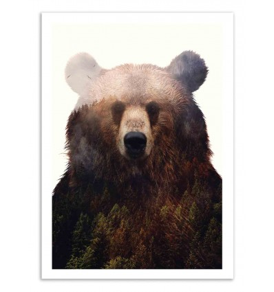 Art-Poster 50 x 70 cm - Bear and forest - Andreas Lie