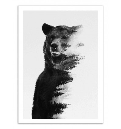 Art poster 50 x 70 cm bear black and white andreas lie