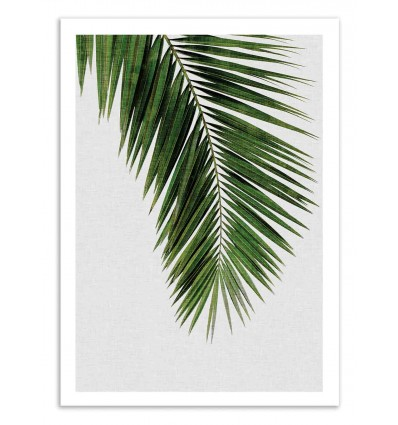 Art-Poster 50 x 70 cm - Palm Leaf - Orara Studio
