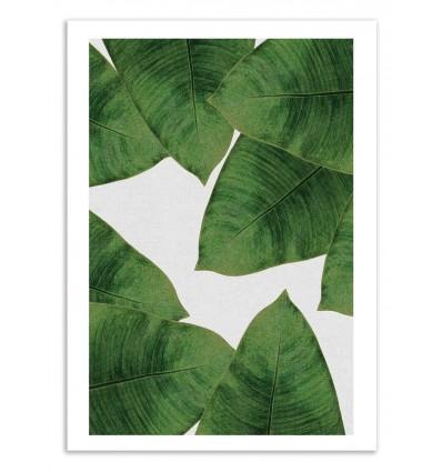 Art-Poster 50 x 70 cm - Banana Leaf - Orara Studio