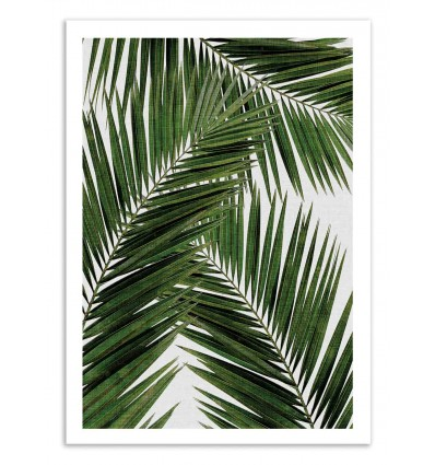 Art-Poster 50 x 70 cm - Palm Leaf Part 2 - Orara Studio