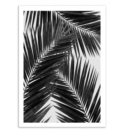 Art-Poster 50 x 70 cm - Palm Leaf Part 2 Black and White - Orara Studio