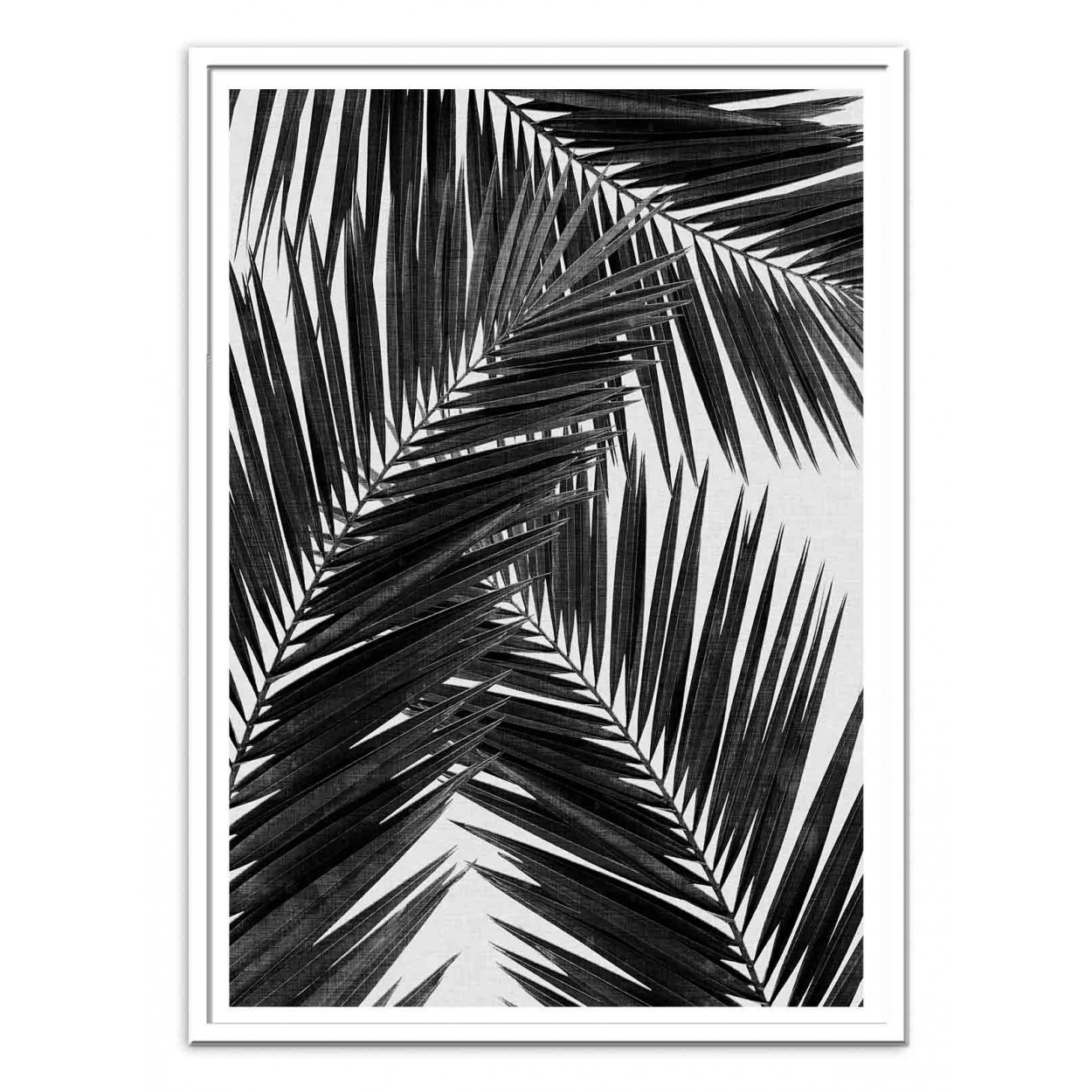 Art poster 50 x 70 cm palm leaf part 2 black and white