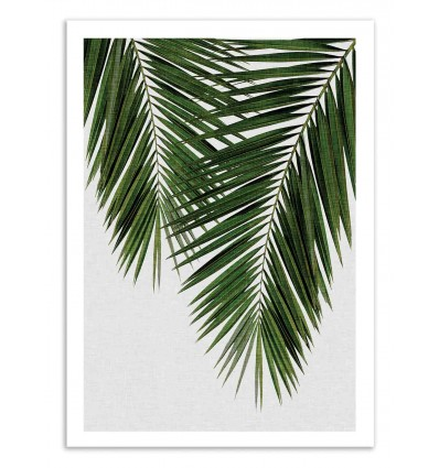 Art-Poster 50 x 70 cm - Palm Leaf Part 3 - Orara Studio