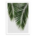 Art-Poster - Palm Leaf Part 3 - Orara Studio