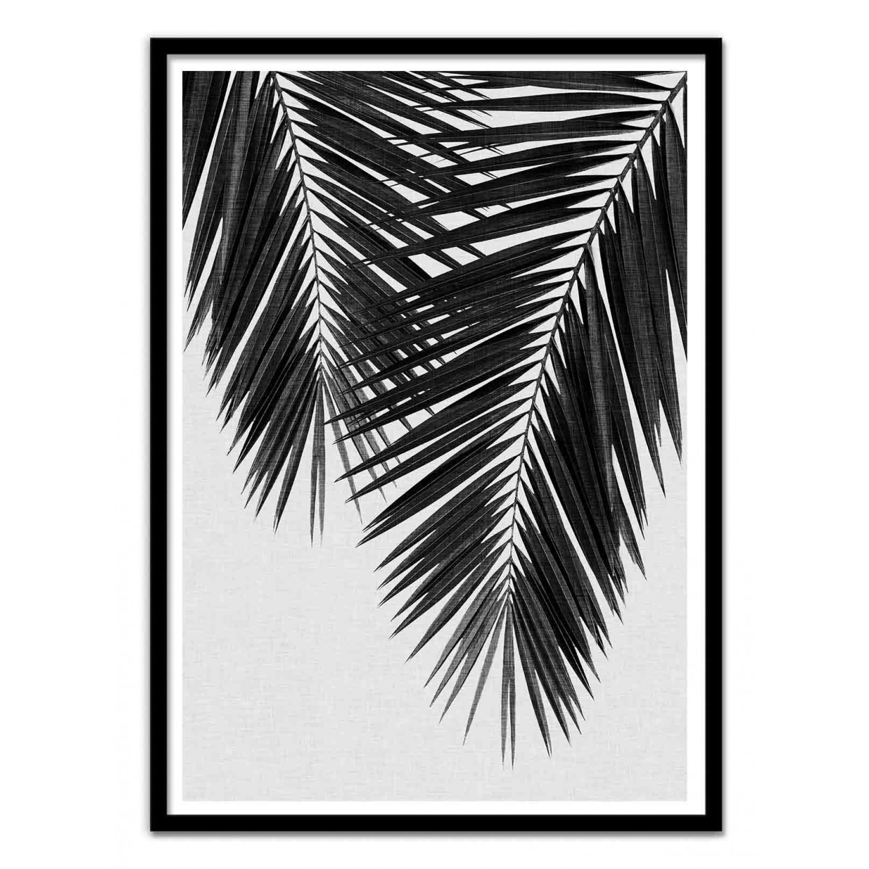 Art poster 50 x 70 cm palm leaf part 3 black and white