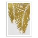 Art-Poster - Palm Leaf Gold - Orara Studio