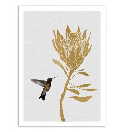 Art-Poster 50 x 70 cm - Hummingbird and flower part 2 - Orara Studio