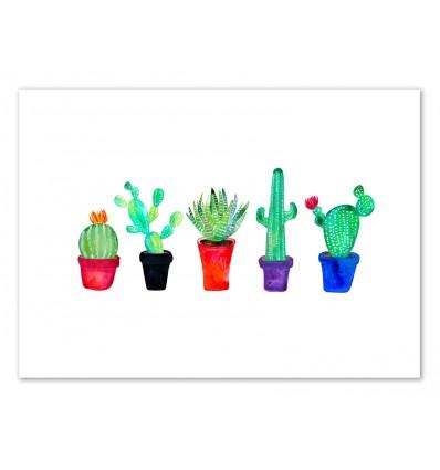 Art-Poster 50 x 70 cm - Pot of cacti - Amaya Brydon