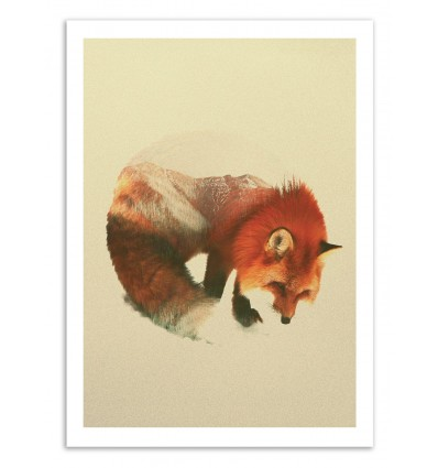 Art-Poster 50 x 70 cm - Snow Fox - Andreas Lie
