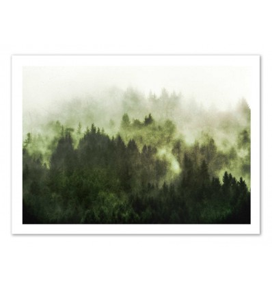 Art-Poster 50 x 70 cm - Myst and green forest - Cascadia