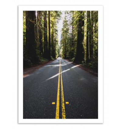 Art-Poster 50 x 70 cm - The road - Cascadia
