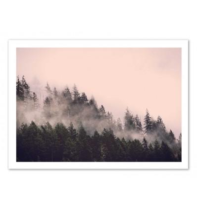 Art-Poster 50 x 70 cm - Pink myst - Cascadia