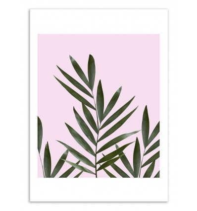 Art-Poster 50 x 70 cm - Leaves pink - Cascadia