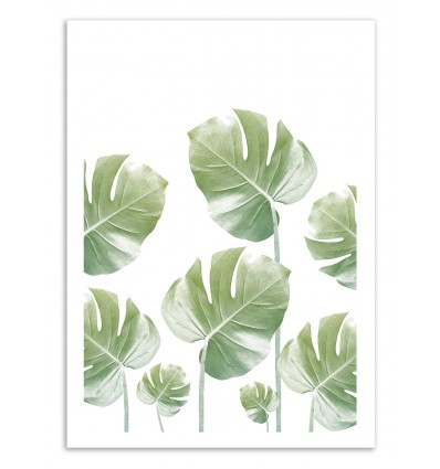 Art-Poster 50 x 70 cm - Monstera Rising - Cascadia