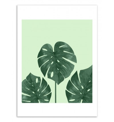 Art-Poster 50 x 70 cm - Monstera Green - Cascadia