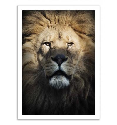 Art-Poster - Lion part.2 - Julia Bénard