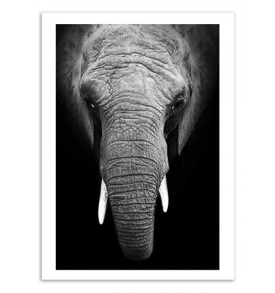 Art-Poster - Elephant Vertical - Julia Bénard