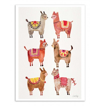 Art-Poster - Alpacas - Cat Coquillette