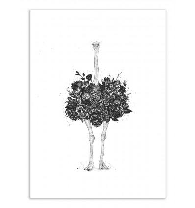 Art-Poster - Floral ostrich - Balazs Solti