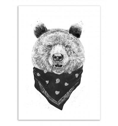 Art-Poster - Wild Bear - Balazs Solti