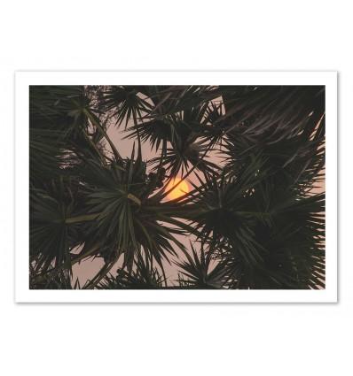 Art-Poster - Palm trees reverse - Luke Gram