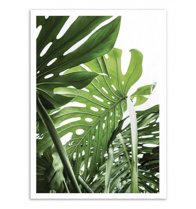 Art-Poster - Jungle - Sisi and Seb